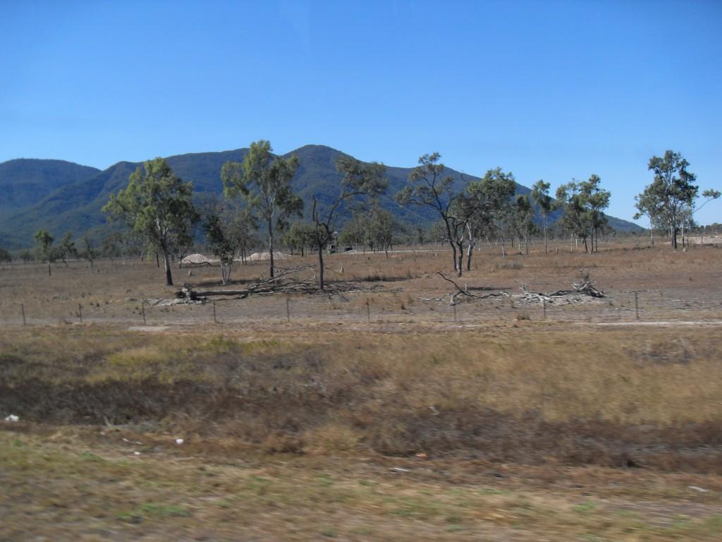 Steppenlandschaft in der Nähe von Ravenswood Australien