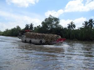 Boot mit Kokosnüssen auf einem Nebenfluss im Mekong-Delta in Vietnam