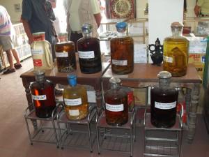 Tiere wie Schlangen in Alkohol als Schnaps zum Kaufen in Vietnam