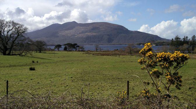 Wandern in Irland Teil zwei: Wanderung im Killarney Nationalpark