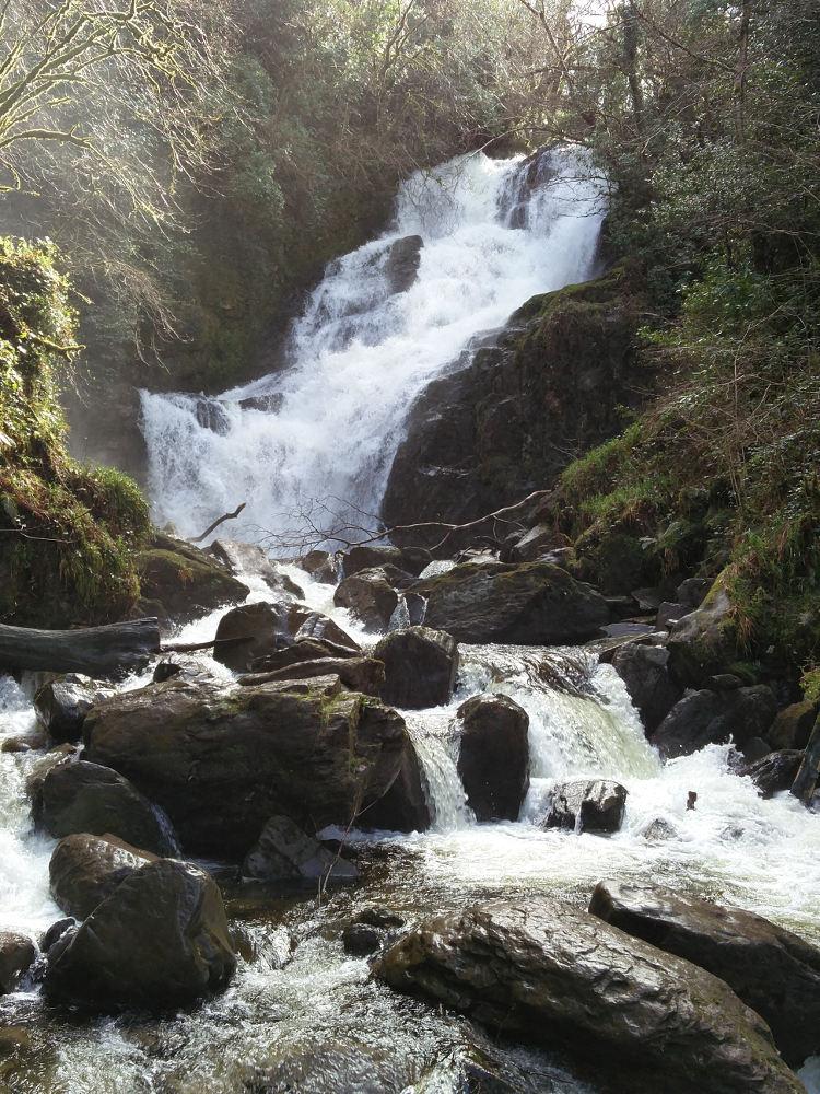 Die Torc Wasserfälle im Killarney Nationalpark