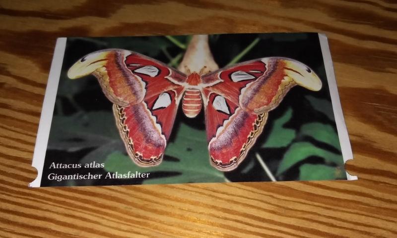 Eintrittskarte Garten der Schmetterlinge mit Bild von gigantischem Atlasfalter (Attacus Atlas)