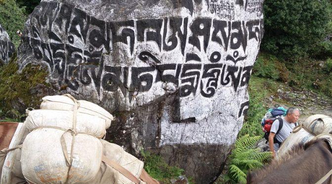 Trek Richtung Phakding und Thadokoshi