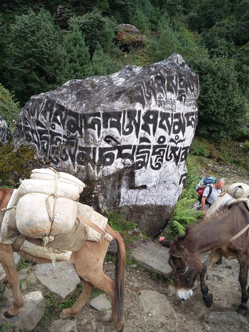 Gebetsstein auf unserem Weg nach Phakding Nepal
