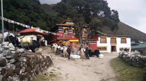 Kloster in Khumjung Valley Nepal (Auf dem Markt von Namche Bazar und Trek nach Khumjung Valley)