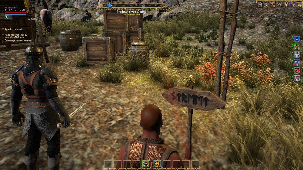 Straßenschild mit Runen bei Shroud of the Avatar