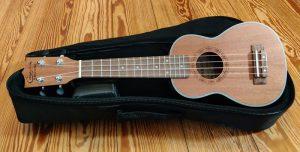Ukulele Instrument (Meine Pläne für das Jahr 2019)